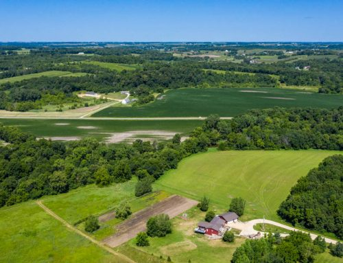 18.69± Acre Acreage | Section 10  Milton Township | Dodge County, MN
