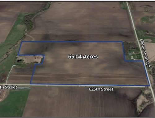 65.04 ± Acre Farmland – Kasson, MN